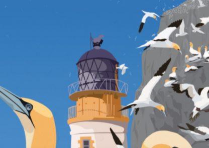 Bass Rock Gannets Detail