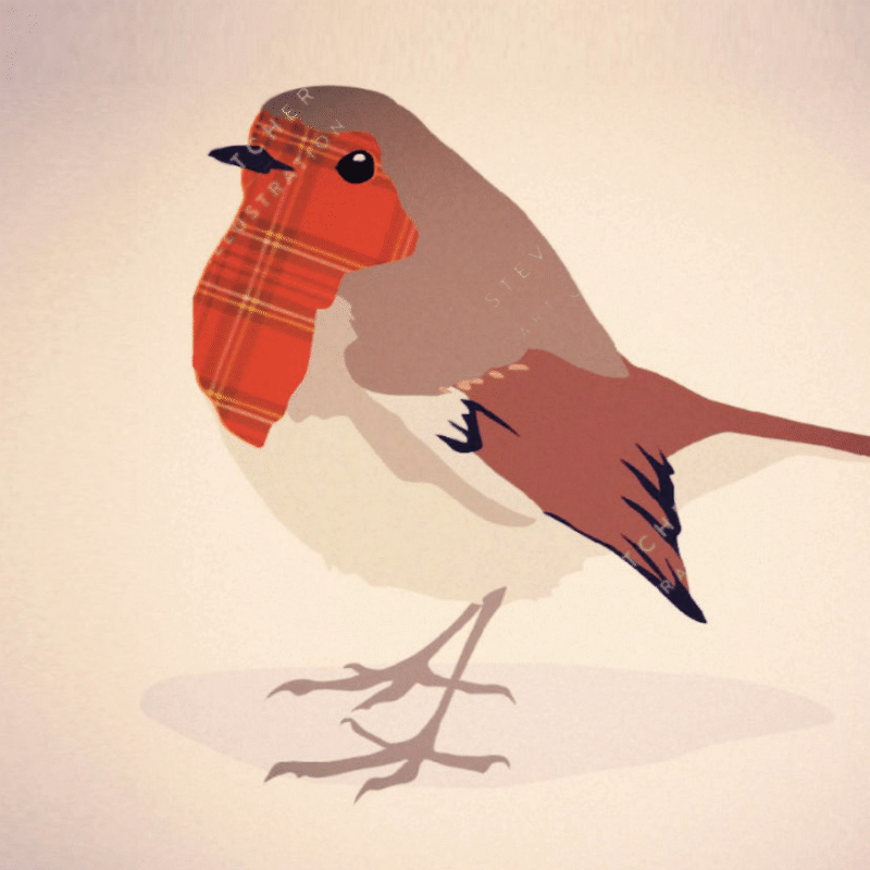 Tartan Robin